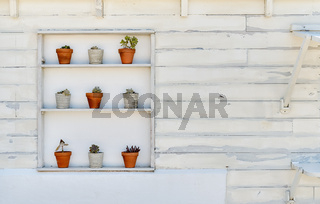 On white old wall shelf with houseplants