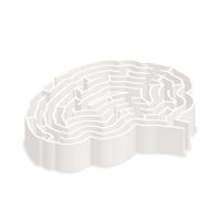 Complicated gray labyrinth in brain shape in isometric view on white
