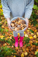 A young girl with a basket of mushrooms is standing in pink rubber boots. Focus on mushroom basket