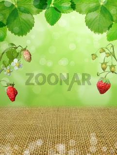strawberries background berries leaves forest bokeh green