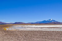 Brava Lagoon Reserve, La Rioja, Argentina