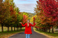 Woman stands among the rows of deciduous trees in Autumn