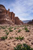 Petra in Jordan - Monastery