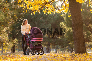 Girl with a stroller with a newborn baby walks in a beautiful park
