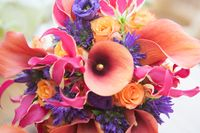 Close up of colorful flower mix