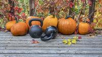 pumpkins and kettlebells in backyard