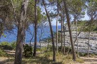 Parc natural de Mondrago - Punta de ses Gatoves