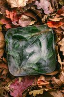 Frozen green leaves in ice cube on autumn orange leaves