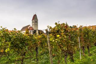 Kirche in Hagnau am Bodensee mit Weinreben im Herbst, Baden-Württemberg, Deutschland