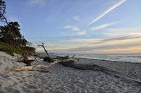 Baltic Sea western beach 20