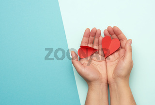 female hand holding red paper hearts on a blue background