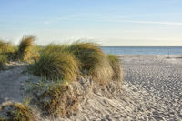 Beach Fischland-Darss-Zingst