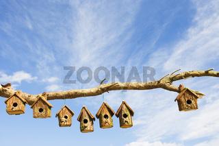 An assortment of Bird boxes
