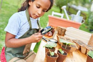Kind mit Pflanzen und Lupe im Ökologie Projekt