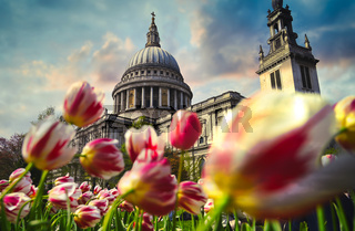 St. Paul's Cathedral located in Central London