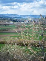 View to Rosaliengebirge in Burgenland