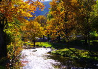 Torrent with sparkling water surface and trees in bright autumn leaves on the bank