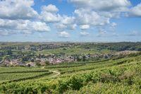 Village of Jugenheim,Rhinehessen wine region,Germany