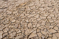 Dry desert soil ground sand cracked texture pattern