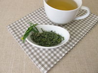 A cup of tea with dried hedge mustard