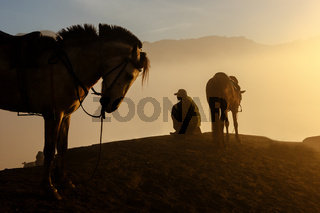 Silhouettes of men and the horses on the top of the hill with misty atmosphere. Mt.Bromo, Indonesia