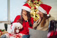 Two girls with a small dog are sitting on the couch on New Year's Eve.