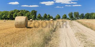 Feldweg durch Landschaft mit Getreidefeldern mit Strohballen