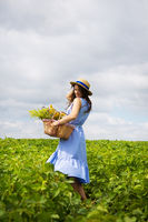 girl in a hat stands on a green field with a basket of flowers