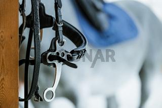 Hors riding equipment, saddle and stirrup.