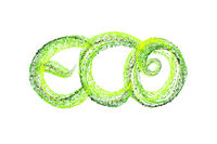 Handwritten word lettering Eco made by fresh green bio circles of confetti particles isolated on white background