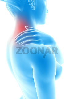 3d rendered illustration - woman having a painful neck