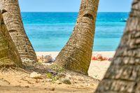 Boracay, Philippines - Jan 30, 2020: White beach of Boracay island. Tourists sunbathe on the beach under palm trees.