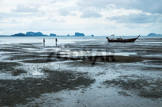 Couple looking for seafood during low tide with long tail boat in ocean at Koh Mook, Thailand, Asia
