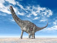 Dinosaur Diamantinasaurus