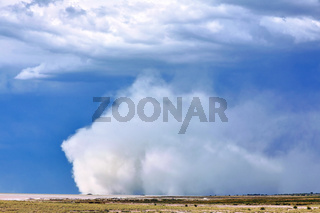 Sandsturm im Etosha-Nationalpark, Namibia | sand storm at Etosha National Park, Namibia