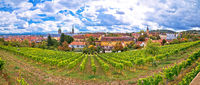 Bamberg. Town of Bamberg panoramic view from Michaelsberg vineyards