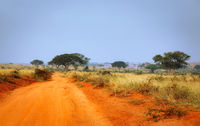 Sand road through Murchison Falls National Park Uganda