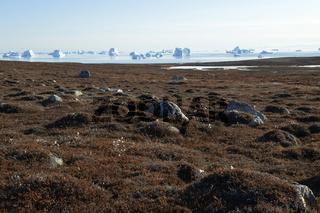 Herbstlandschaft und Eisberge anm Sydkap, Scoresby Sund, Ost-Grönland, Scoresby Sund