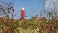 Lighthouse Texel Netherlands