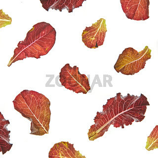 Colorful leaves pattern of healthy natural organic salad flying against white background.