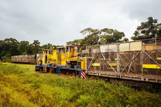 Sugar Cane Train in Queensland Australia