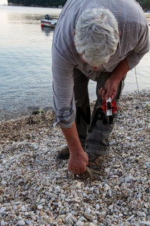 Fisherman at the harbor picks up a caught octopus in Kassiopi in Corfu, Greece