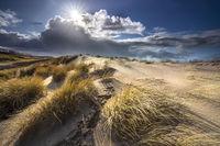 sunlight over sand dunes in summer