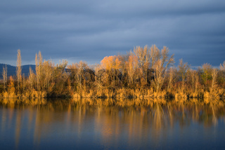 Orange foliage reflected in a quiet lake in Burgenland