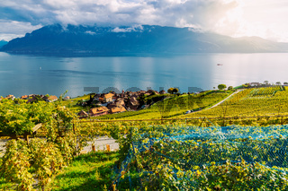 Lavaux, Switzerland: Little town, Lake Geneva and the Swiss Alps landscape seen from Lavaux vineyard tarraces in Canton of Vaud