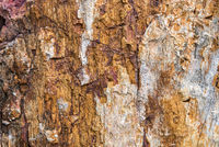Rough and cracked texture stone surface