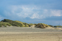 Beautiful dunes at the beach of Borkum