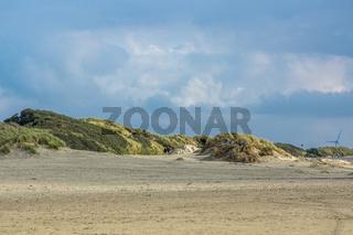 Dünen am Strand von Borkum