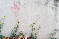Red arrow on a weathered facade with ivy leaves