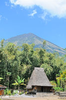 Life under the volcano Inerie Flores Indonesia